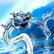 AquaColuber